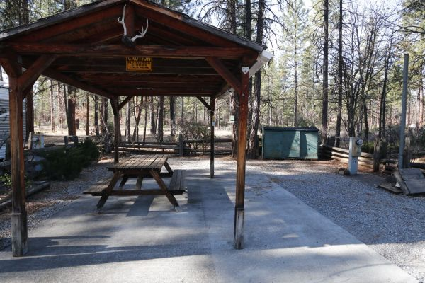 Campsite with Covered Picnic Area